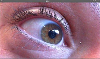 image Base en direct livecam pour les voyeurs francais