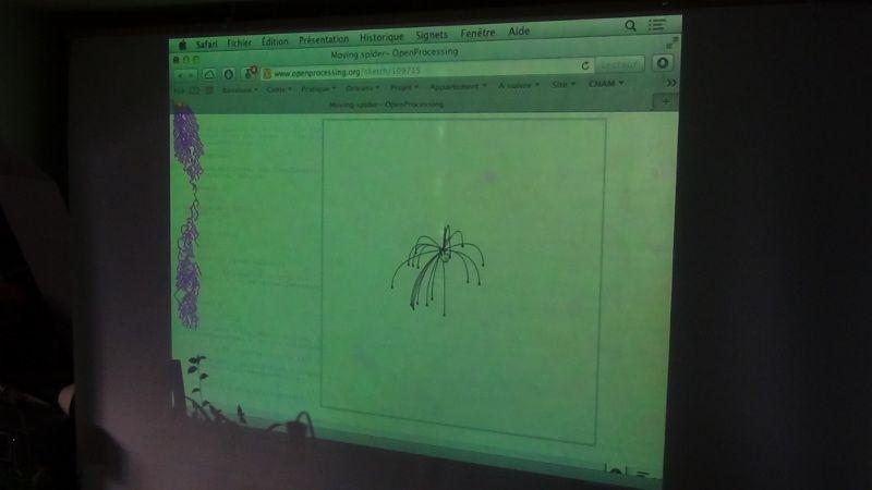 petite-araignee-processing